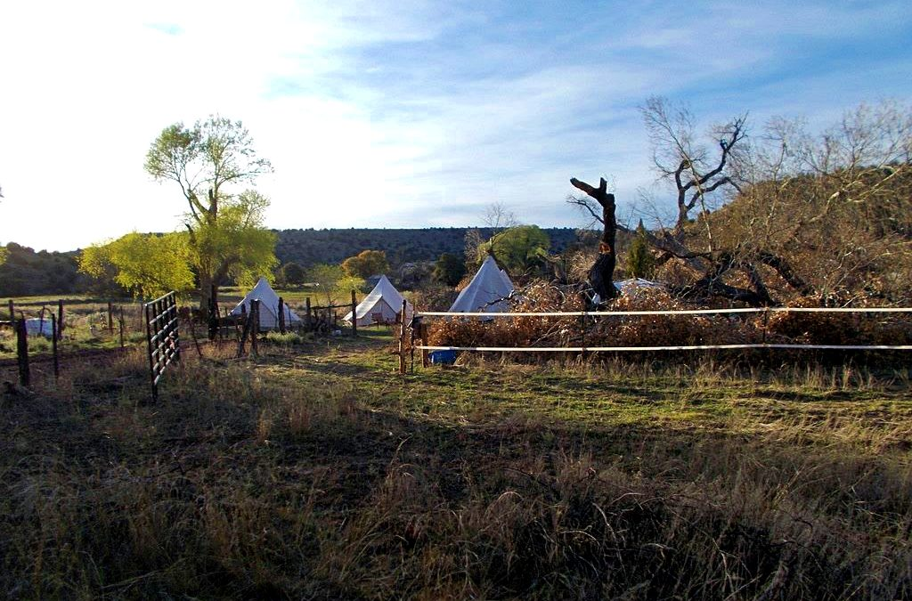 Answering Questions About Tent Living